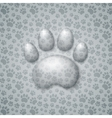 Trace Cat in the Form of Droplets Water vector image vector image