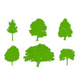 tree green silhouettes oak poplar red maple vector image vector image