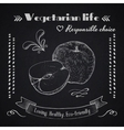 Vegetarian lifestyle background vector image vector image