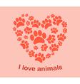 Heart animals footprints vector image