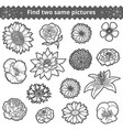 find two same pictures colorless set of vector image vector image