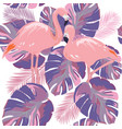 flamingo leaves vector image