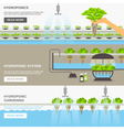 Hydroponic System vector image vector image