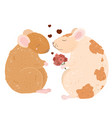 lovely rats in love date bouquet flowers vector image vector image