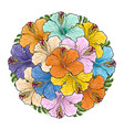 tropical flowers hibiscus in bouquet of sphere vector image vector image