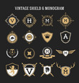 vintage monogram and shield elements vector image vector image
