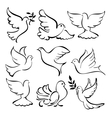 abstract dove set vector image vector image