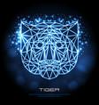 abstract polygonal tirangle animal tiger neon vector image vector image