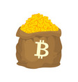 bag of bitcoin sack of cryptocurrency lot of vector image