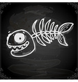 Fish Skeleton Drawing on Chalk Board vector image