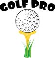 Golf Pro vector image vector image