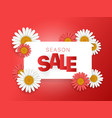 season sale offer season sale banner horizontal vector image vector image