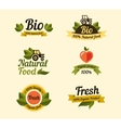 Set of vintage style elements for labels badges vector image vector image