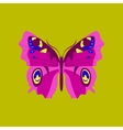 Colorful icon of butterfly isolated on green vector image