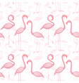 seamless pattern of a pink flamingo vector image vector image