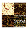 set seamless patterns with vector image vector image