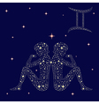 Zodiac sign Gemini on the starry sky vector image vector image