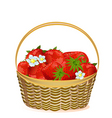 basket of strawberries with flowers vector image vector image