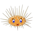 cute sea urchin smiling vector image