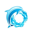 Dolphin emblem vector image