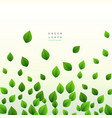 eco green leaves floating on white background vector image vector image
