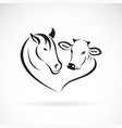 horse head and cow head design on a white vector image vector image