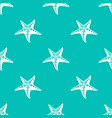 sea star pattern vector image vector image