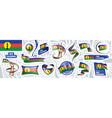 set national flag new caledonia vector image