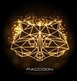 abstract polygonal tirangle animal raccoon neon vector image vector image