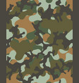 camouflage seamless pattern vector image vector image