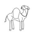 cartoon camel animal manger design vector image