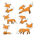 collection of some cute foxes vector image