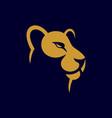 lioness logo design vector image vector image