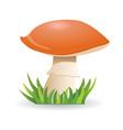 mushroom boletus vegetable healthy food vector image