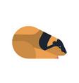 norwegian lemming flat cute vector image