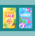 summer sale seasonal offer vector image vector image