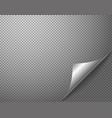 bending silver corner element on transparent vector image vector image