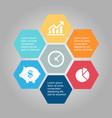 business infographic hexagon vector image vector image