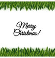 christmas postcard with tree branches vector image vector image