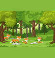 cute foxes in the forest vector image