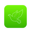 dove icon green vector image vector image