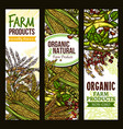farm grown cereals and grain banner set vector image vector image