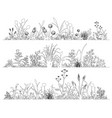 field flowers and herbs landscape set line art vector image