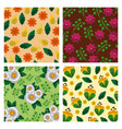 set of pattern flowers floral decoration wallpaper vector image vector image