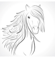 sketch horse head with mane on white vector image