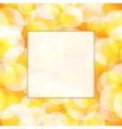 Yellow frame vector image vector image
