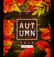 autumn sale lettering label vector image vector image