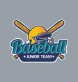 baseball badge logo emblem template junior team vector image vector image