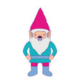 gnome with costume colorful and purple contour vector image vector image