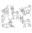 set cute cartoons goats vector image vector image